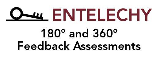 Feedback_Assessment_logo