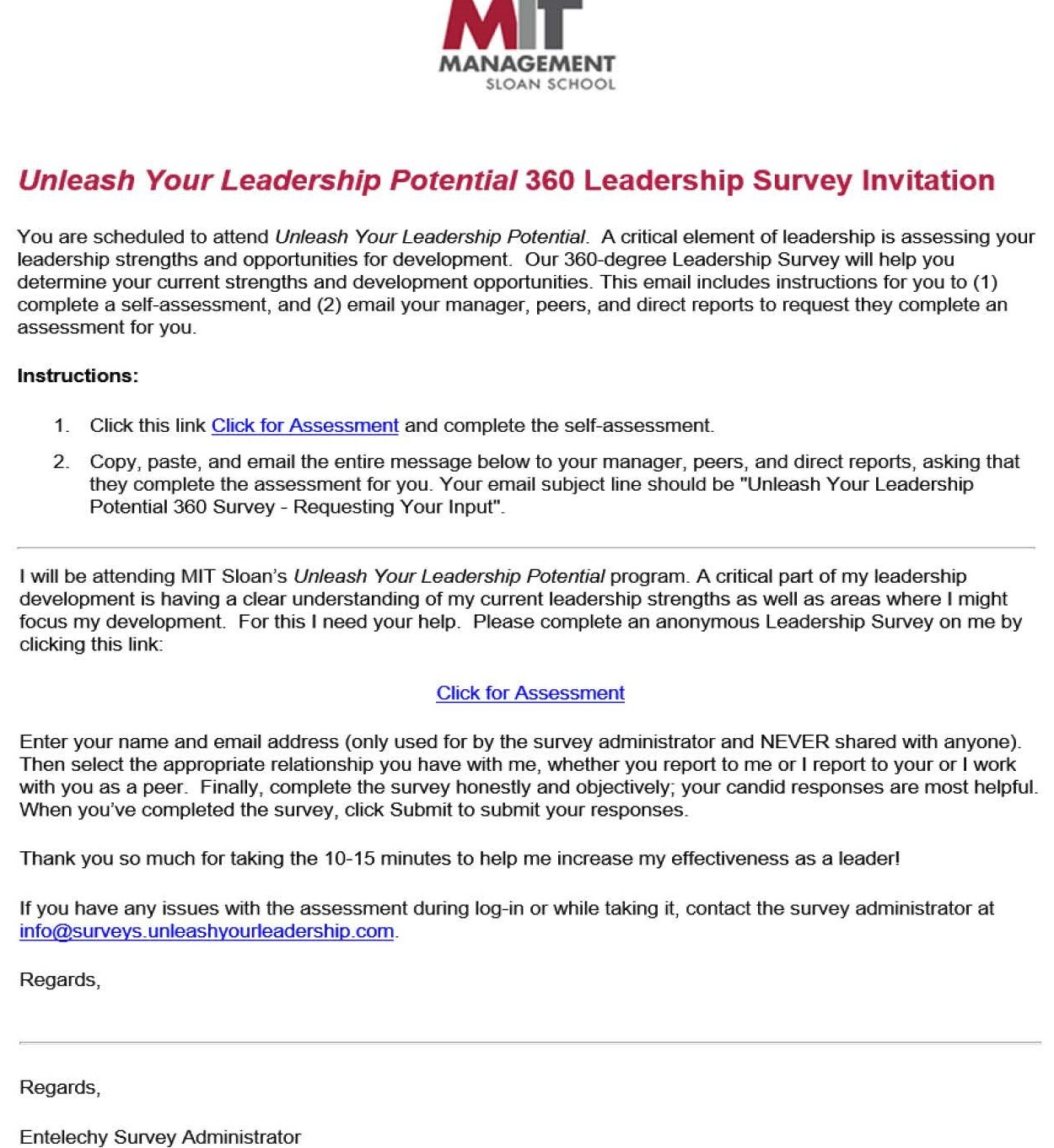 MIT_Leadership_Assessment_a